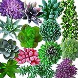 Outee 14 Pcs Artificial Succulents Plants Fake Succulent Plants Assorted Flocking Textured Aloe Stems Faux Succulent Bouquet