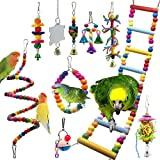 10 Packs Bird Swing Chewing Toys- Parrot Hammock Bell Toys Parrot Cage Toy Bird Perch with Wood Beads Hanging for Small Parak