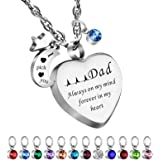 Dletay Cremation Necklace for Ashes with 12 Birthstones Heart Memorial Keepsakes Urn Necklace Ashes Jewelry