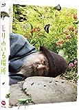 モリのいる場所 (特装限定版) [Blu-ray]
