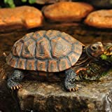 Danmu 1Pc of Polyresin Tortoise Statue Garden Statues, Outdoor Statues, Garden Ornaments, Yard Statue for Home and Fairy Gard