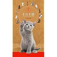 【Amazon.co.jp 限定】カレンダー2022 開運まねき猫 (月めくり・壁掛け)【特典データ:無病息災スマホ壁紙…