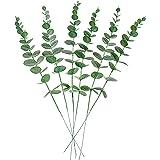 [Amazonブランド] Umi.(ウミ) 花の花束の目玉に結婚式の家の装飾のための個々の茎を持つ6個の人工ユーカリの葉 (グリーン)