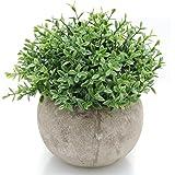 Velener Mini Plastic Fake Green Grass of Plants with Pots for Home Decor Benn Grass