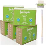 1,000 BAMBOOGALOO Organic Bamboo Cotton Buds -100% Plastic Free. Eco-Friendly & Biodegradable, Value Pack of Q Tips/Ear Buds/