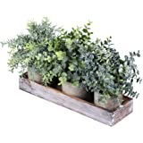 Set of 3 Mini Potted Artificial Eucalyptus Plants Faux Rosemary Plant Assortment with Wood Planter Box for Indoor Office Desk