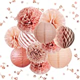 NICROLANDEE Rose Gold Party Decorations -12PCS Elegant Party Supplies Tissue Pom Poms Paper Lantern Glitter Confetti 30G for