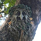 Tree Hanging Planter Hand-painted Greenman Tree Face Sculpture for Yard Decorations and Home D?cor. JHP