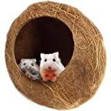 SunGrow Coconut Shell House for Hamsters, 14-16 Inches Circumference, Raw Coco Husk, Pet Hiding House, Climber or Chew Toy, f