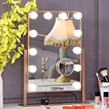 Hansong Large Hollywood Makeup Vanity Mirror with Lights,Plug in Light-up Professional Mirror with Storage,Removable 10x Magn