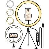 LEDリングライト ELEGIANT 10.2インチ 160つのLEDビーズ 自撮りライト ビデオカメラ撮影 アルミ合金シェル 美容化粧 11段階調光 生放送 YouTube TikTok