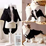 i'Pet Handsome Prince Cat Bridegroom Wedding Tuxedo Faux Twinset Design Small Boy Dog Formal Attire Doggy Party Wear Puppy Bi