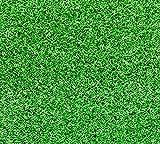 ホームグリーンワールド (HOMEGREENWOLRD) ロールタイプ人口芝 芝丈6mm (3(1m*3m)) [並行輸入品]