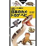 山溪ハンディ図鑑 増補改訂 日本のカメ・トカゲ・ヘビ