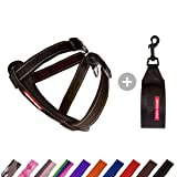 EzyDog Chest Plate Dog Harness - with Free Car Restraint - Best No Pull Harnesses for Small, Medium and Large Dogs - Custom F