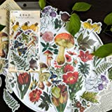 Laptop Stickers Scrapbook Stickers, Doraking DIY Decorative Fashion Plants Set Stickers for Laptop,Envelop,Scrapbook,Luggage,
