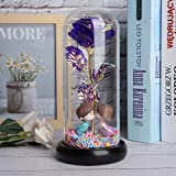 Preserved Real Rose, Beauty and The Beast Enchanted Rose, Preserved Fresh Rose in Glass Dome Romantic Forever Her Wedding Val