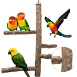 Bird Perch Nature Wood Stand Toy Branch for 3-4pcs Small Medium Parrots Birdcage Toy Climbing Stairs for Parakeets Cockatiels