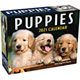 Puppies 2021 Mini Day-to-Day Calendar