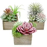 Mingfuxin Artificial Succulents Plants in Pots, Assorted Faux Greenery Plants Indoor/Outdoor Dector for Home Coffee Table Dis