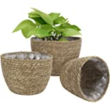 Seagrass Planter Basket Indoor Outdoor, Flower Pots Cover, Plant Pots Containers, Natural, 10 inch