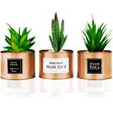 FORTIVO Copper Desk Decor pots for Office