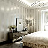 KeTian Modern Minimalist Vertical Striped Non-Woven Wallpaper for Bedroom Living Room 0.53m (1.73' W) x 10m(32.8'L)=5.3m2 (57