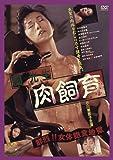 蘭光生 肉飼育 [DVD]