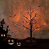 Hypestar Halloween Tree with 24 Orange LED Lights USB /Battery Operated Lighted Tree for Halloween Decorations Tabletop Glitt