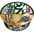 日清食品 どん兵衛 特盛きつねうどん [東] 131g×12個