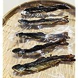 いわな 骨酒 焼き干し 5尾セット 八海山 岩魚 (1尾/約16cm)