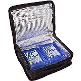 スケーター 保冷 ランチバック 1段  弁当箱 600ml~900ml用 保冷剤 2個付 KB51
