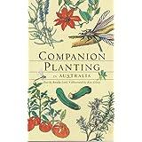 Companion Planting in Australi