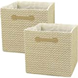 Foldable Cube Storage Bins 13x13 Inch, Delicate Lace Textured Storage Cubes Organizer with Dual Handles for Shelf Drawer, 2 P