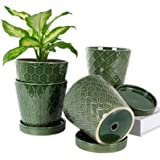 "BUYMAX Plant Pots Indoor –5""inch Ceramic Flower Pot with Drainage Holes and Ceramic Tray - Gardening Home Desktop Office Wind"