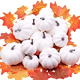 YIZRIO 12 PCS Assorted Sizes Rustic Harvest White Mini Artificial Pumpkins for Halloween, Fall and Thanksgiving Decorating