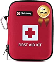 WELL-STRONG First Aid Kit with Durable and Compact Canvas Bag for Home, Car, School, Office, Sports, Travel, Survival,...
