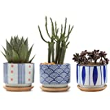 T4U 8cm/3 in Ceramic Succulent Planter Pots with Bamboo Tray Set of 3, Japanese Style Porcelain Handicraft as Gift for Mom Si