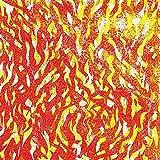 Fire [解説 / 国内仕様輸入盤CD] (BRZN275)