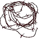 Fun Express Soft to The Touch Rusty Barbwire Cord Decoration, 18'