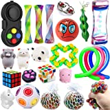 Wankko 24 Pcs Sensory Toys Set Relieves Stress & Anxiety Fidget Toy For Children Adult - Special Toys Assortment for Birthday