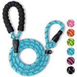 WePet Durable Dog Leash for Medium Large Dogs, Sturdy and Premium Quality Reflective Leashes, Supports Strong Pulling, Comfor