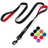 Primal Pet Gear Dog Leash 6ft Long - Traffic Padded Two Handle - Heavy Duty - Double Handles Lead for Control Safety Training