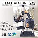 BEASTIE Cat Tree Scratching Post Scratcher Tower Condo House Furniture Wood 121 Grey Colour