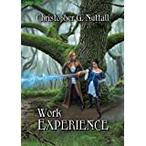 Work Experience (Schooled In Magic Book 4)