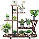 Wood Plant Stand Indoor Outdoor, Plant Display Multi Tier Flower Shelves Stands, Garden Plant Shelf Rack Holder in Corner Liv