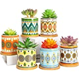 Succulent Plant Pots - 3.2 inch Ceramic Succulent Planter - Small Cylinder Flower pots for Cactus with Drainage Hole and Bamb