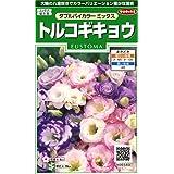 サカタのタネ 実咲花6580 トルコギキョウダブルバイカラーミックス 00906580