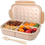Bento Box for Adults Lunch Containers with 3 Compartment Lunch Box Food Containers Leak Proof Microwave Safe(Flatware Include