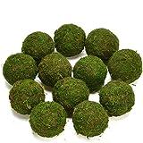 Byher Natural Green Moss Decorative BallHandmade (3.5-set of 6)